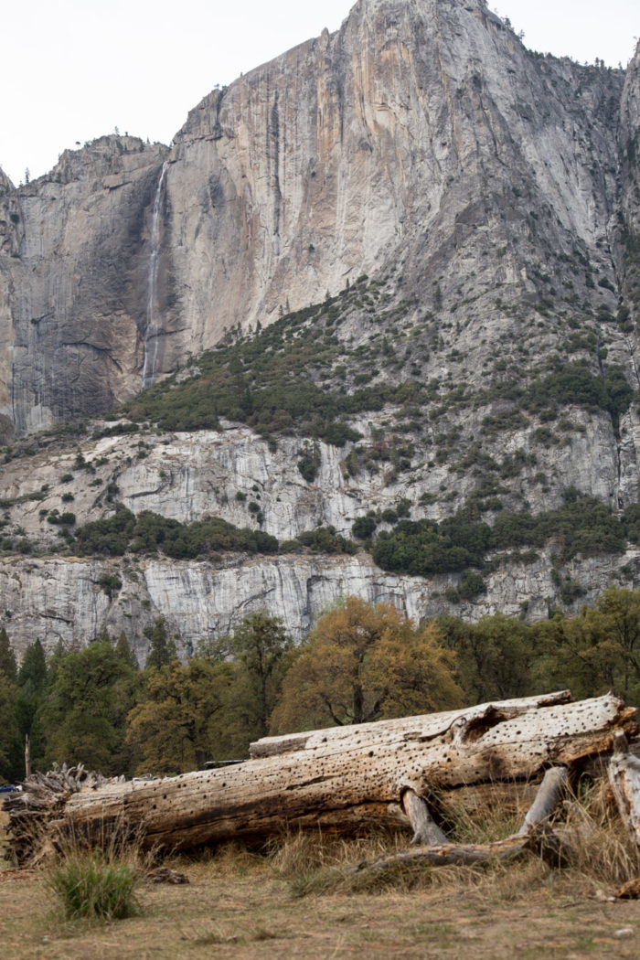 Visiting-Yosemite-Valley-HitherAndThither-19