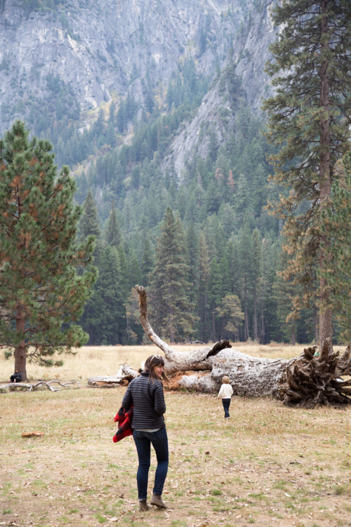 Yosemite-Packing-HitherAndThither-12