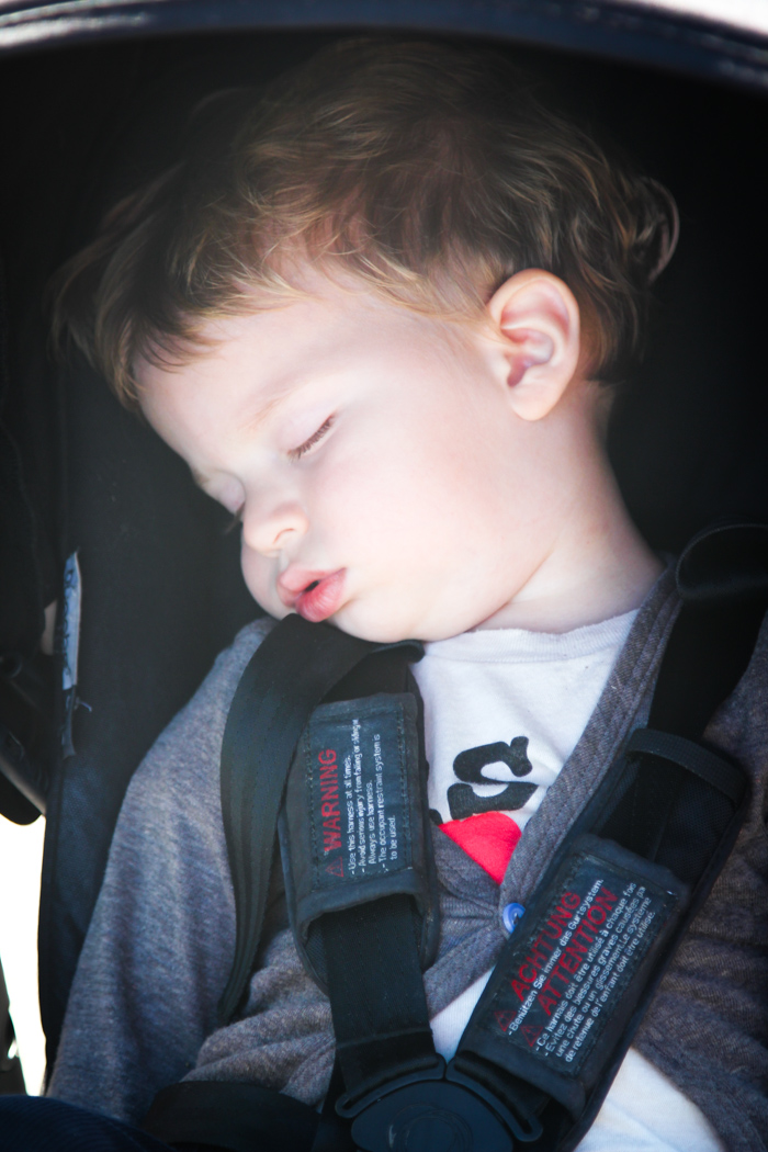 Sleeping Toddler in a Stroller