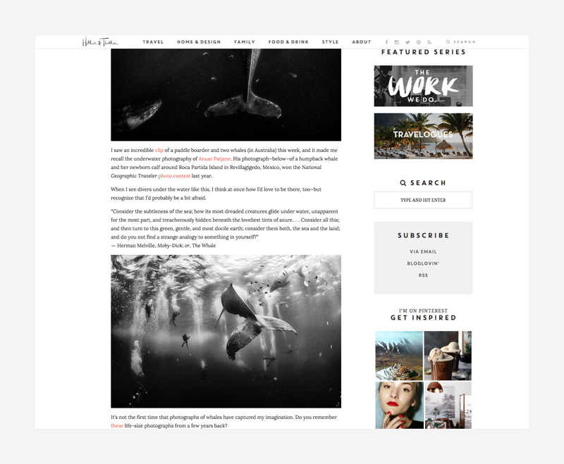 blog screen shot 8