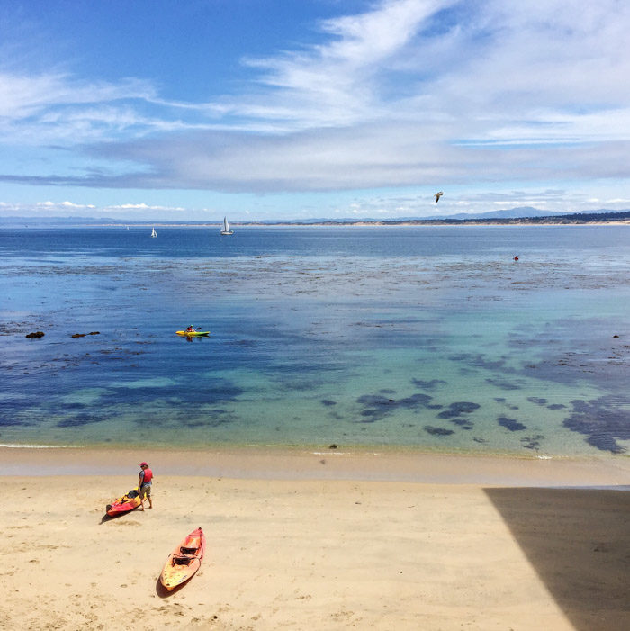 Monterey-Aquarium-Tidepools-with-kids_Hither-and-Thither-8